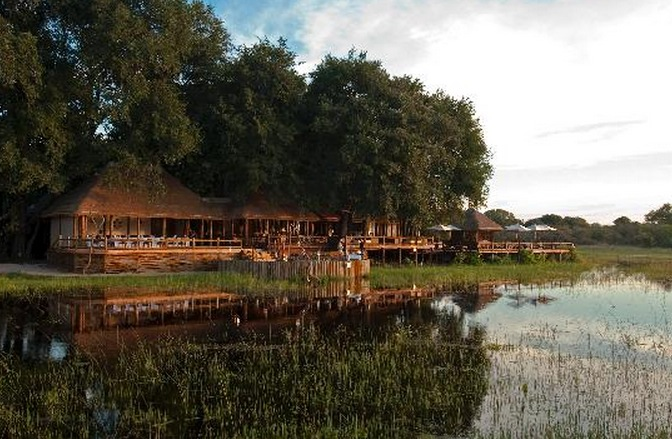 Botswana_Sanctuary Cheif